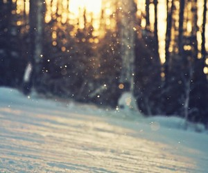 nature, sunset, and snow image