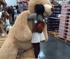 bear, teddy bear, and tumblr image