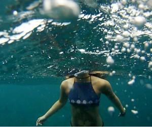 ocean+ image