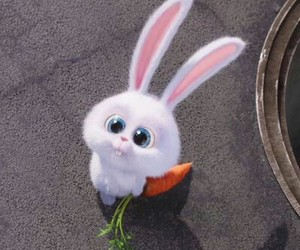 rabbit, bunny, and carrot image