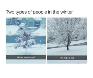 funny, winter, and snow image