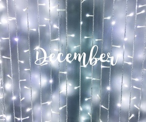 december, christmas, and fairy lights image