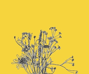 yellow, flowers, and wallpaper image