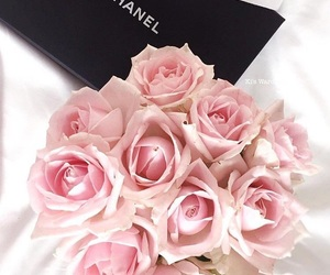 chanel, pink roses, and chanel pink image