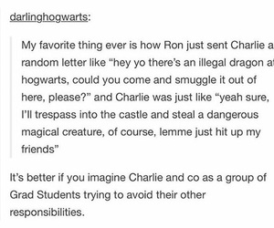 harry potter, ron weasley, and charlie weasley image