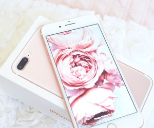 iphone, pink, and rose image