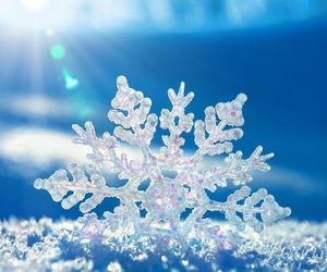 beautiful, cold, and flake image