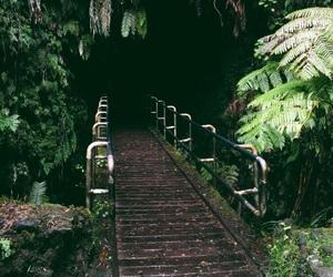aesthetic, beautiful, and bridge image