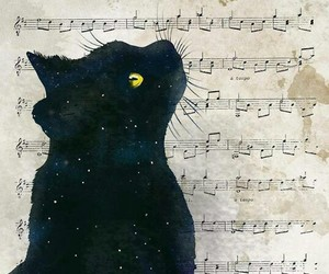 black cat, illustration, and music image