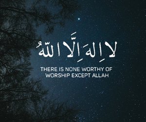 arabic, islamic, and ﻋﺮﺑﻲ image