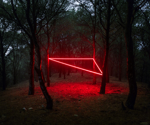 red, neon, and forest image