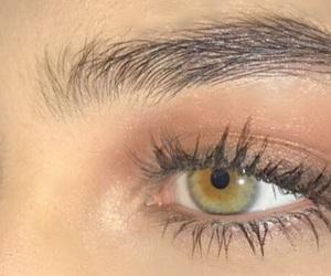 arab, brown, and eye image