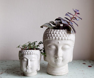 Buddha, plants, and zen image