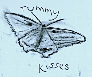 butterfly and kisses image