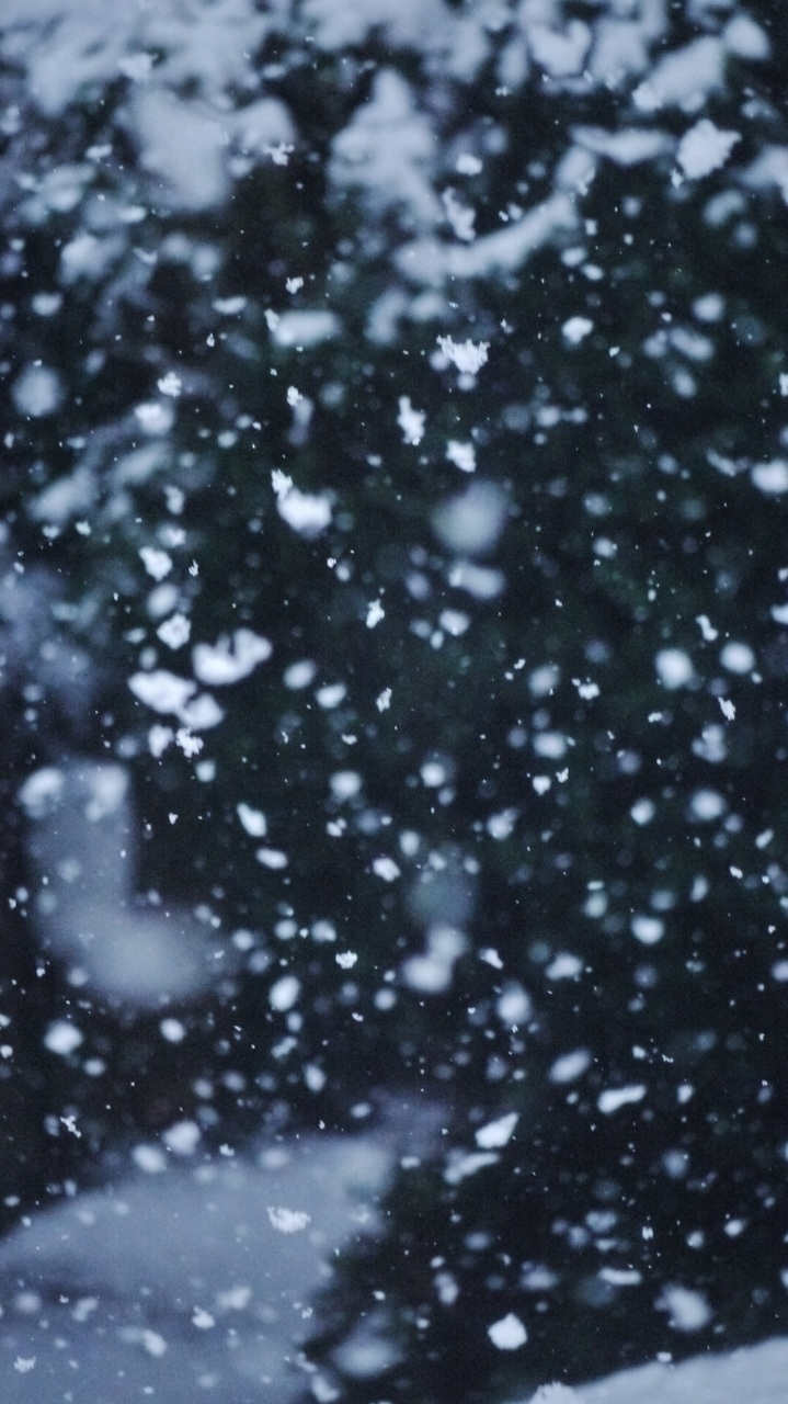 snow, tumblr, and winter image