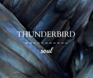 thunderbird and ilvermorny image