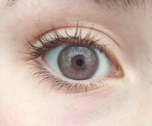 eye, brown, and tumblr image