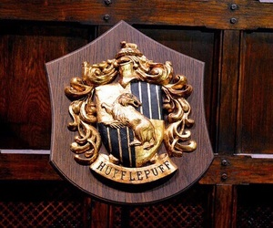 theme and hufflepuff image