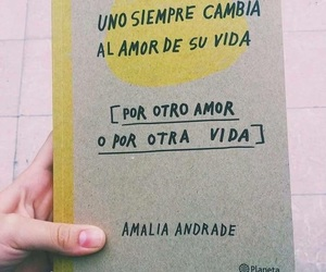 book, vida, and amor image