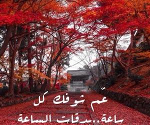 فيروز،عربي،حب،شوق image