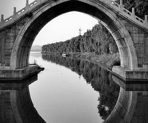 blanco y negro image