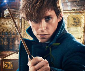 fantastic beasts, newt scamander, and harry potter image