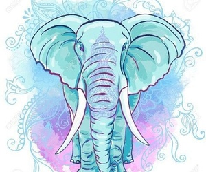 elephant, blue, and wallpaper image