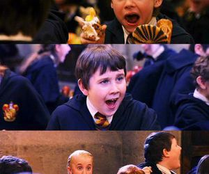 harry potter, hp, and ron image