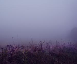 aesthetics, dreamy, and foggy image