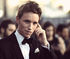 eddie redmayne, fantastic beasts, and actor image