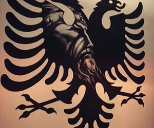 eagle, I Love You, and albania image