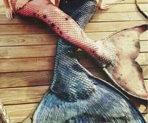 beach, goals, and mermaid image