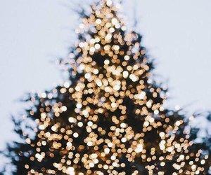 christmas, light, and winter image