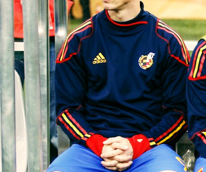 fernando torres, spain, and world cup image