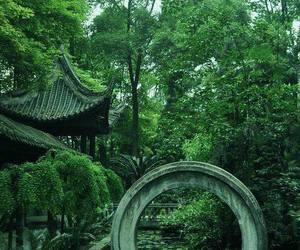 green asia image