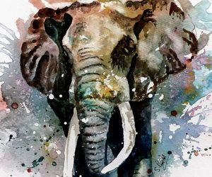 aquarelle, dessin, and Éléphant image