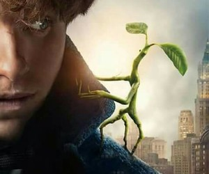 newt scamander, pickett, and fantastic beasts image