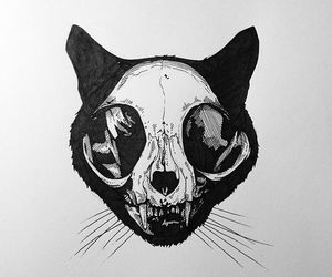 skull, art, and b&w image