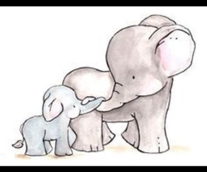 connection, elephants, and cute image