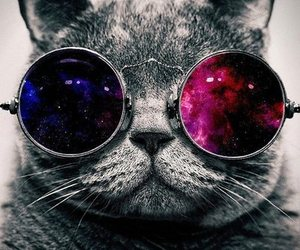 constellation, galaxy, and space. cat. star image