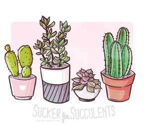 drawing, plants, and qtsie image