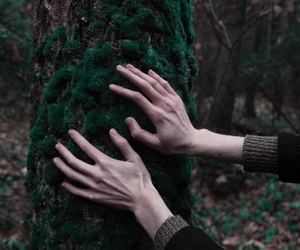hands, indie, and forest image