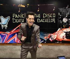 brendon urie, patd, and beebo image