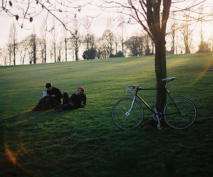 nature, bike, and tree image