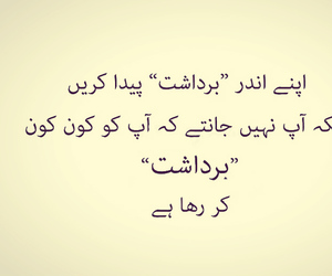 pakistan, sarcasm, and pakistani image