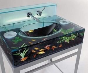 fish, sink, and aquarium image