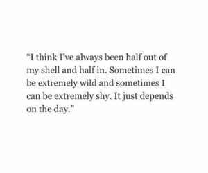 quotes, shy, and wild image