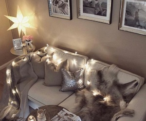 candles, chic, and december image