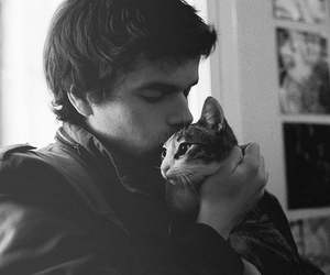 amor, cat, and sweet image