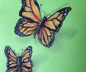 butterfly, draw, and love image